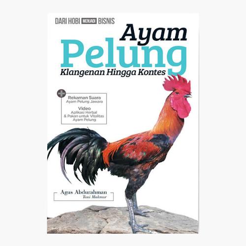Ayam Pelung - dari Klangenan hingga Kontes