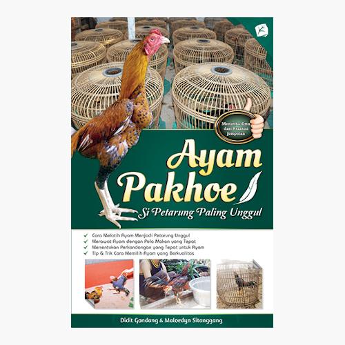 Ayam Pakhoe - Si Petarung Paling Unggul