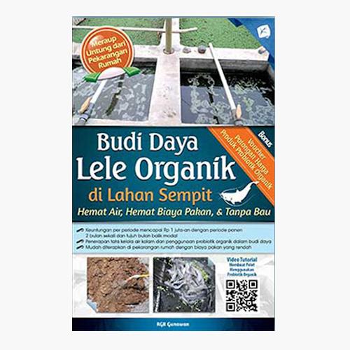 Budi Daya Lele Organik di Lahan Sempit