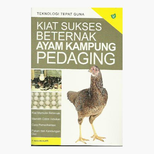 Kiat Sukses Beternak Ayam Kampung Pedaging