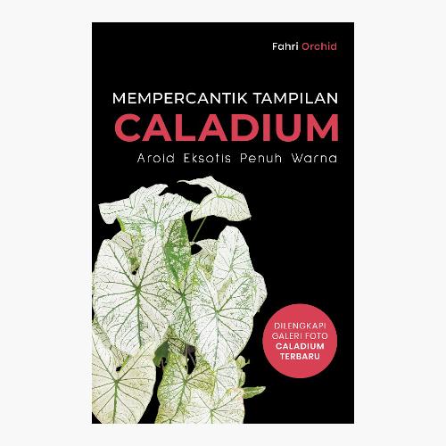 Mempercantik Tampilan Caladium