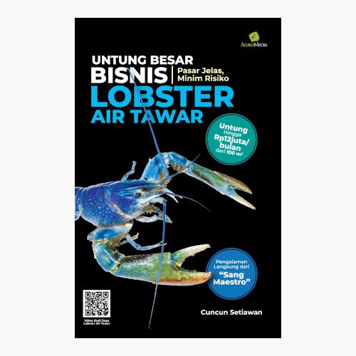 Untung Besar dari Bisnis Lobster Air Tawar